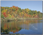 Hedden Park Fall Foliage